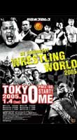 NJPW Wrestling World 2004